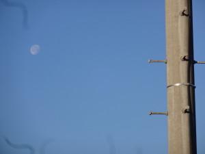 電信柱とお月さま