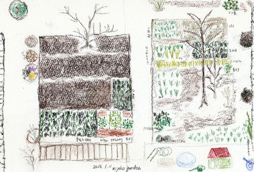 miyake garden 1月