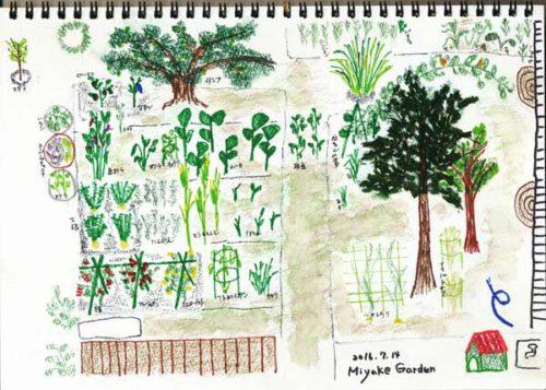 Miyake Garden 7月