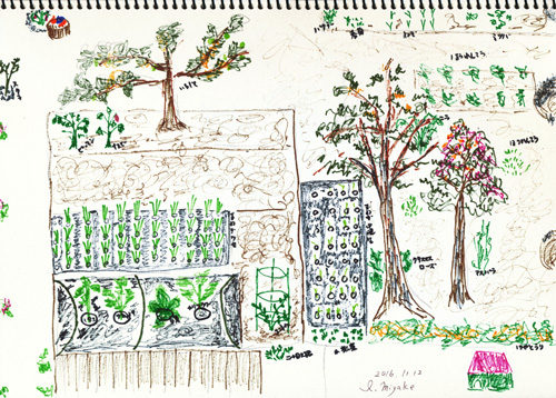 miyake garden11月